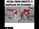 Nakrylo_po_raznomu