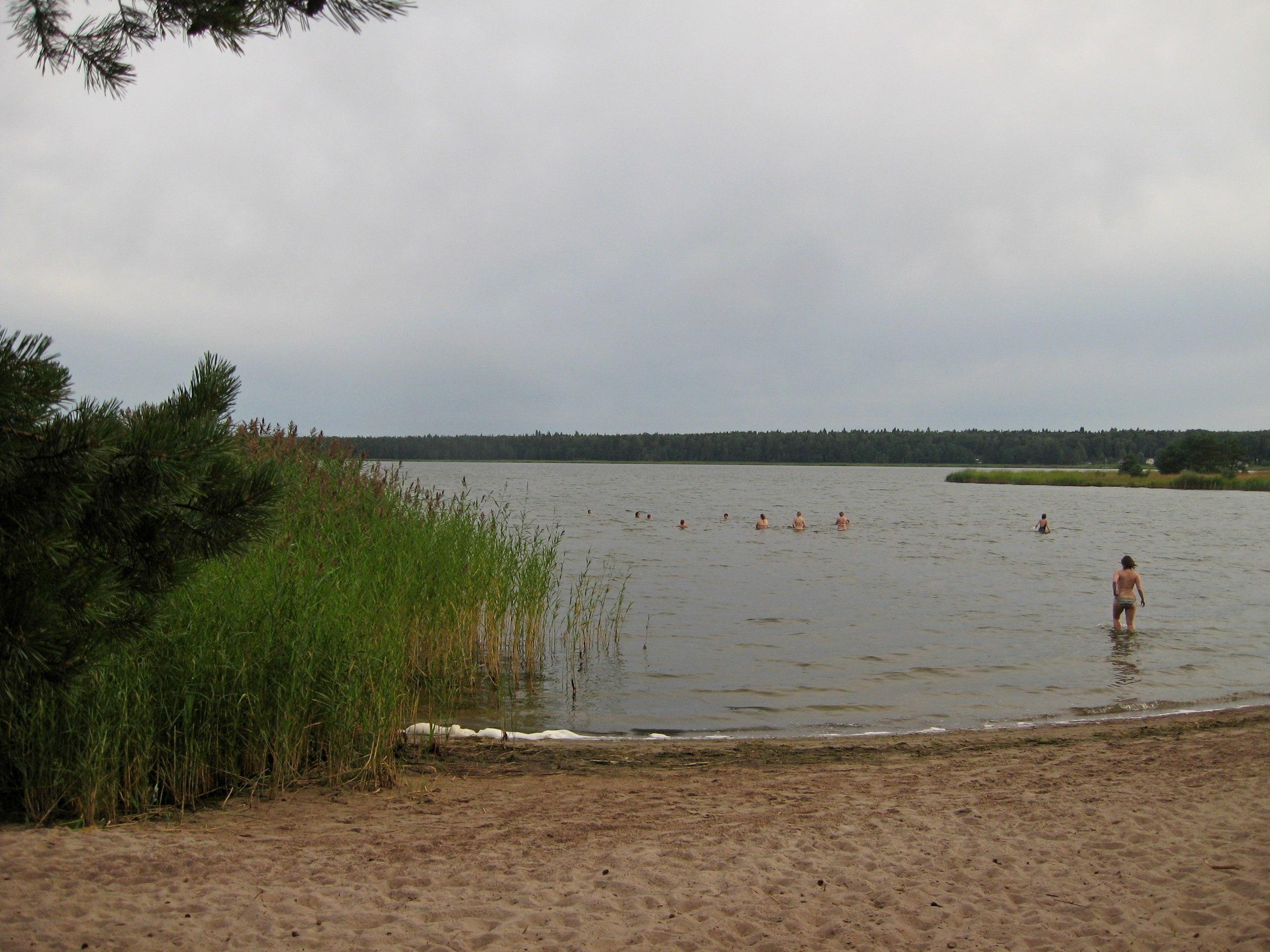 Озеро Липовское (Курголово)