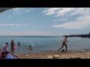 Купаемся вместе с дельфинами! Голубая Бухта, июль 2017г., Джубга, Туапсинский район, Туапсе