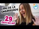 Tag Del Embarazo 29 Semanas de Embarazo miembarazomolon