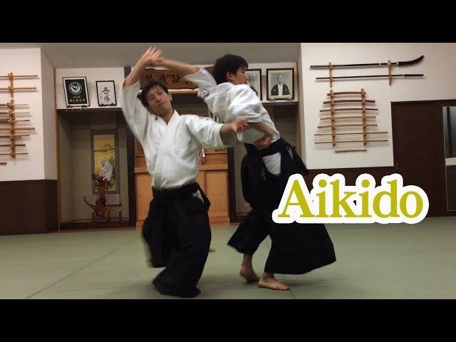 柔らな美しい合気道の自由技 Beautiful and soft Aikido