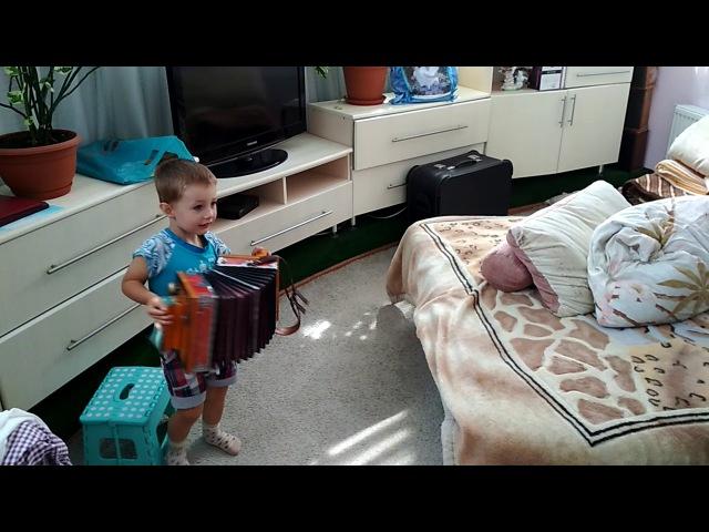 Наши музыканты. Дедушка и внук. Никите 2 года и 1 мес. Гармонь. Музыка.
