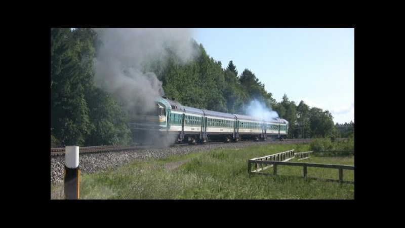 Дизель-поезд ДР1А-228 и дым / DR1A-228 DMU and smoke