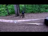 Ruslan Sadykov _ Forest Training _ Motivation _ Angry Skull