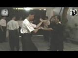 Dai Sifu Duong Tuan 108 Forms Training