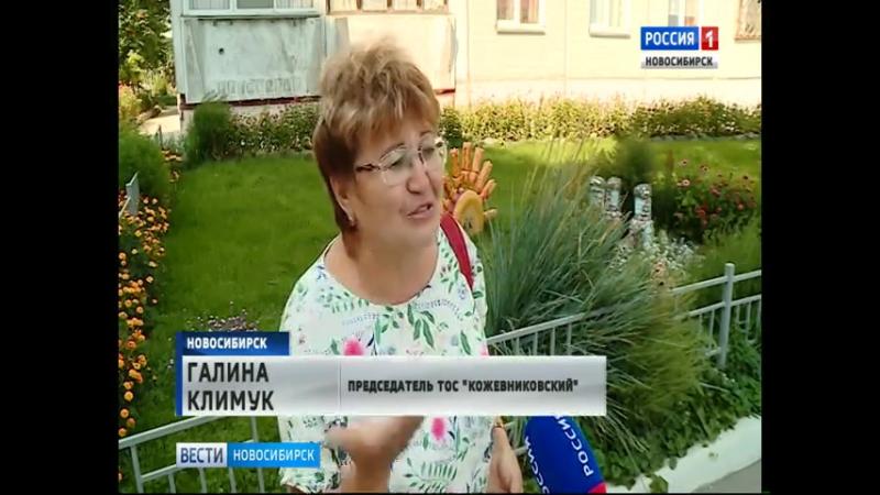 «Я – Новосибирск» жители Северо-Чемского