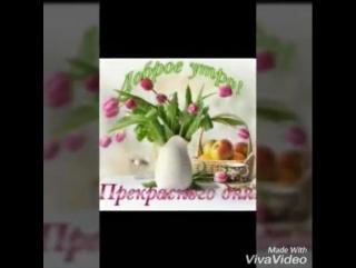 Video-0-02-05-b0d223d4e25ea39303138ff966612a64168d0dc20486c5bf9766bbceeedb8742-V