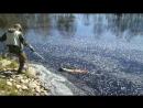 Вот и так на рыбалке бывает