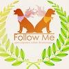 Дрессировка собак Зеленоград  ДЦ FollowMe