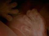 Тело Человека. 2 Фильм. Обыкновенное Чудо. 1998.г.