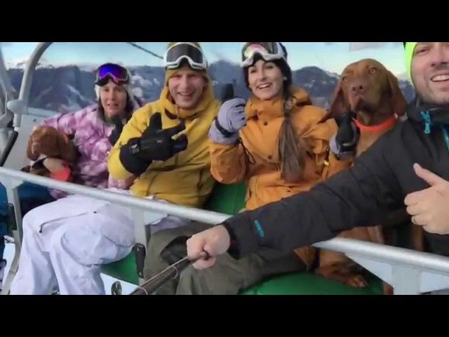 Snowboarding with 2 Magyar Vizsla :) - iPhone 6 Test Video