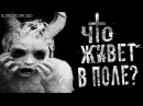 Страшилки на ночь - Что живет в поле Страшные истории на ночь.