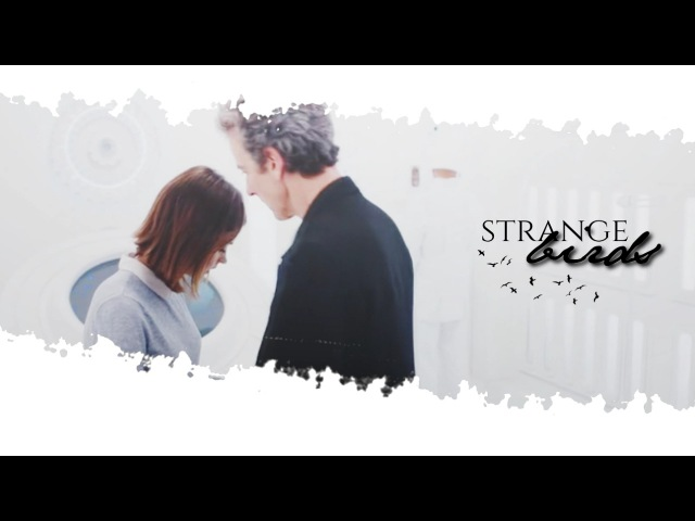 Twelve and Clara | Strange birds