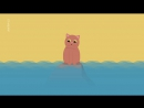 - Pourquoi les chats ont-ils peur de l'eau ?