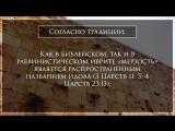 СТБМ -Что значит «мерзость запустения» и как дух антихриста проявляется в верующих -Ральф Мессер