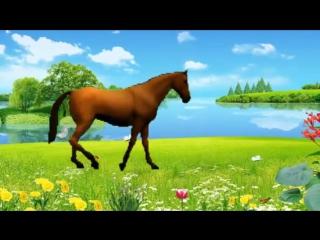 Песенка про лошадку. Музыкальный мультик. Наше всё!