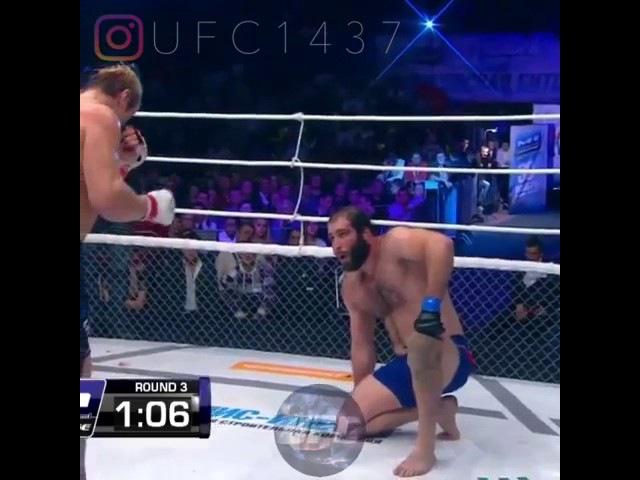 Глухов Газаев Лучший удар Gluhov Gazaev Best kick