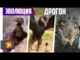 Как Менялся Дракон Дрогон Из Игры Престолов (1-7 сезоны)