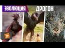 Как Менялся Дракон Из Игры Престолов 1-7 сезоны Киноклипы Эволюция