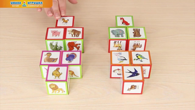 Умные IQ-кубики «Уши, лапы и хвосты», 50 игр для развития интеллекта.mp4