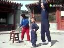 детсто внука мастера кунгфу