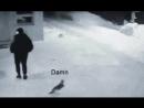 беги Вася беги!