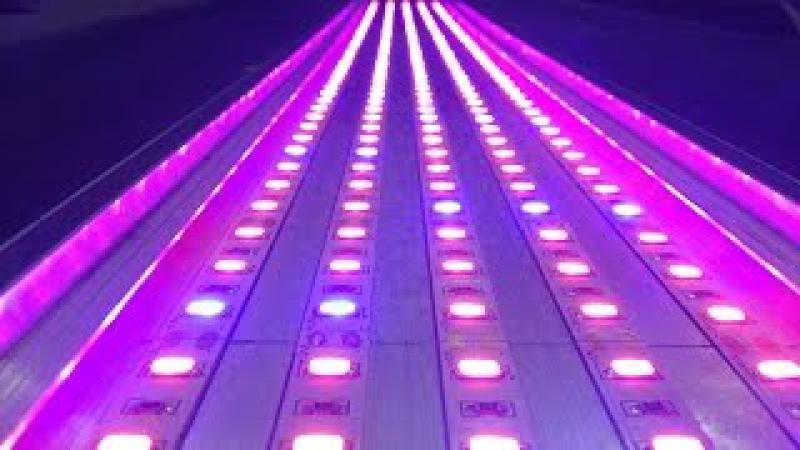Живительный свет 2/3. Фитолампа для досвета растений / Special fito LED strips p2
