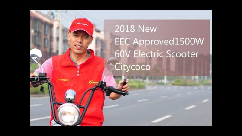 2018 New EEC Approved 1500W 60V Electric Scooter Citycoco from China Facotry