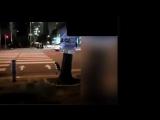 Karşıdan karşıya geçmek için yaya yolunun başında kırmızı ışıkta bekleyen kedi,
