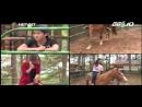 So 11_Sống ở Việt Nam Cao bồi miền Tây và tình yêu xứ ngàn thông Bob Berg - TV Net