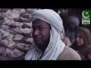 Любовь сподвижников к Пророку Мухаммаду ﷺ