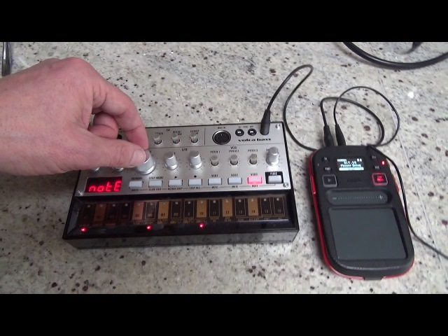 Volca Bass chords in 1 pattern