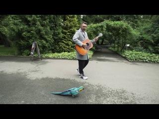 Сергей Шнуров спел песню для попугая из калининградского зоопарка