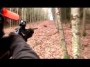 охота на диких кабанов - подборка выстрелов стадо кабанов