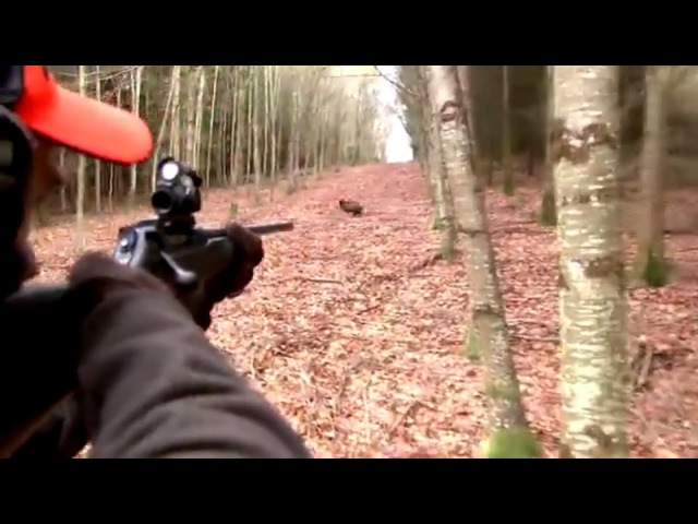 Best of wild boar hunting Top kill shots compilation Ultimate Hunting