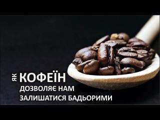 Як кофеїн дозволяє нам залишатися бадьорими [TED-Ed]