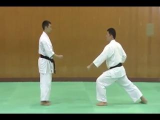 2 Bunkai Kumite Gekisai Sho
