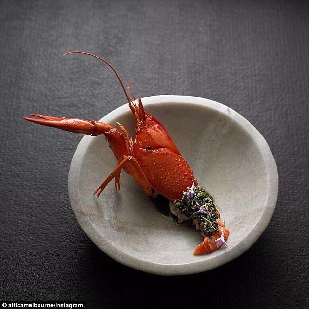 9Es5gSnwJKc - Самые необычные и дорогостоящие блюда ресторанов Австралии
