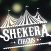 Shekera Circus