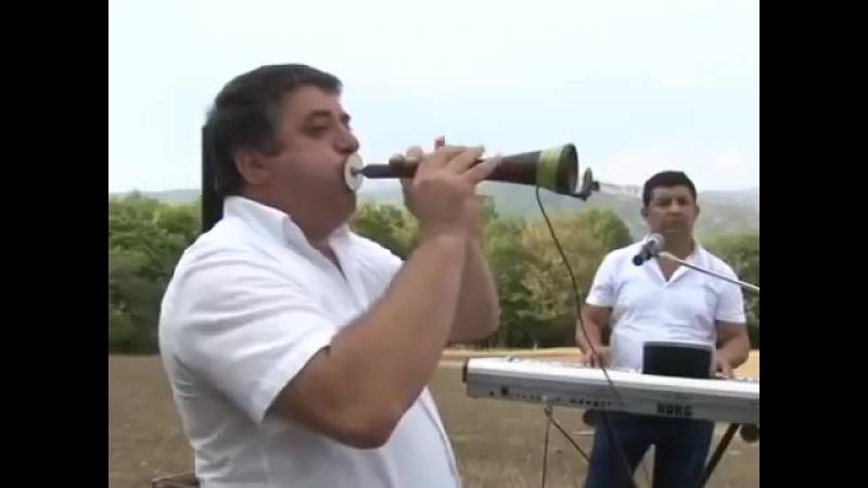 Дурсун Борчалы