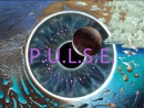 PINK FLOYD -  P • U • L • S • E.  Live at Earls Court  20.10.94, London.