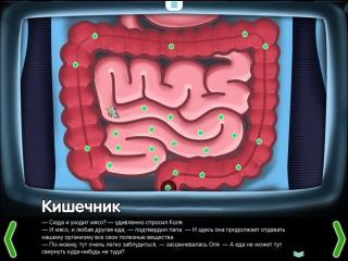 Кишечник. Строение кишечника - познавате...для детей (720p)