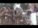 Тренировка алжирских спецслужб для выносливости и суровых условий войны