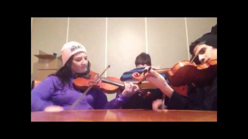 2015.Гудана - Rolling Along - Patti Kusturok's 365 Days of Fiddle Tunes