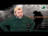 Властьимущим шейх Хамзат Чумаков (с озвучкой)