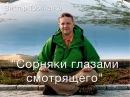 Виктор Тропченко Сорняки глазами смотрящего