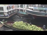 Безумные лодочники в Бангладеше (httpsvk.comchto_bydetesli)