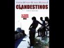 CLANDESTINOS(2007).(DIR,ANTONIO HERM)