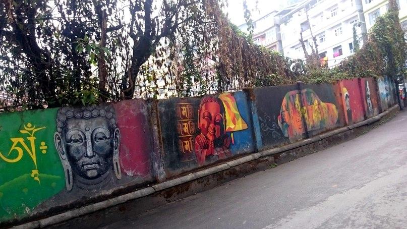 Jelfi Anicca | Delhi