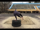Video by Timur Andreev and Aleksandr Sheyh